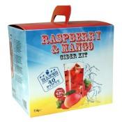 Raspberry & Mango Cider - 40 pt