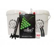 Spanish Rojo Cellar 7 Wine Starter Set
